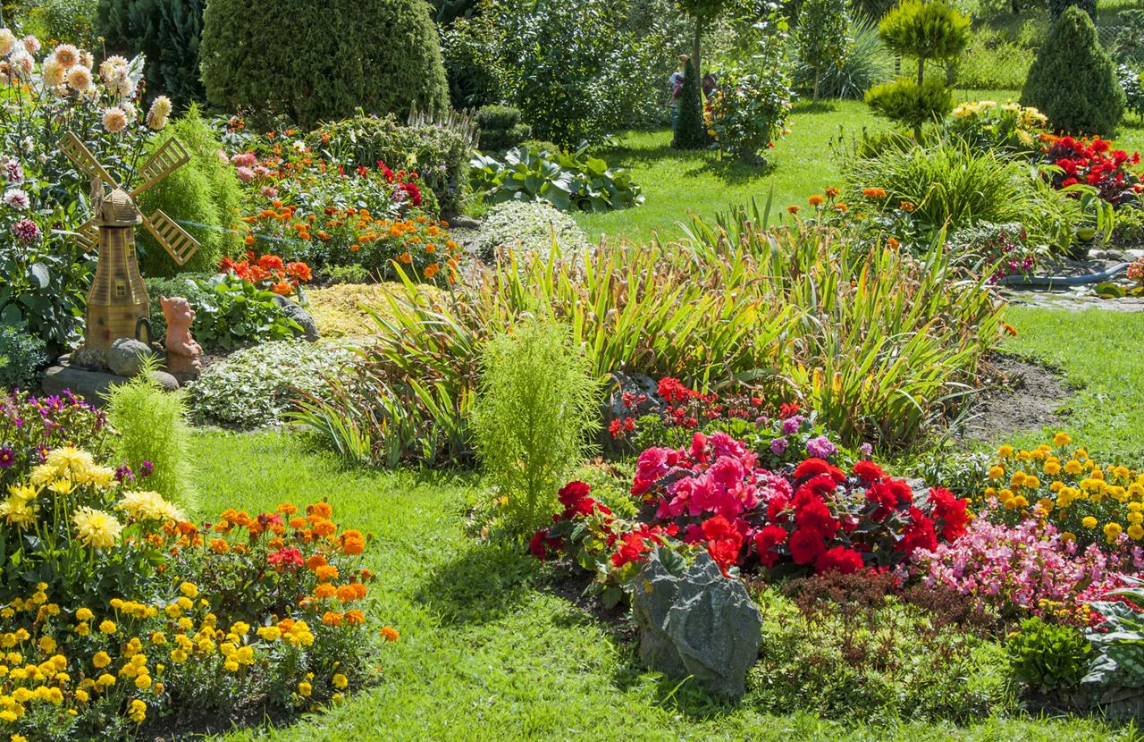 Les jardins de la presqu 39 le socali for Jardins exceptionnels